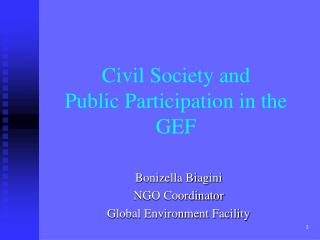 Civil Society and  Public Participation in the GEF