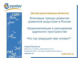 Ключевые тренды развития доменной индустрии в России