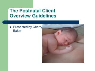 The Postnatal Client Overview Guidelines