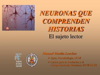 NEURONAS QUE COMPRENDEN HISTORIAS El sujeto lector