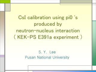CsI calibration using pi0 's produced by  neutron-nucleus interaction ( KEK-PS E391a experiment )