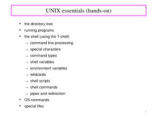 UNIX essentials (hands-on)