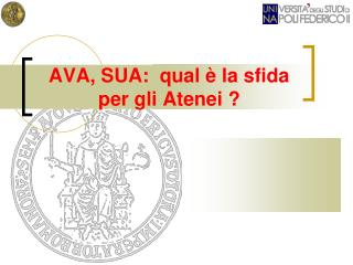 AVA, SUA:  qual è la sfida per gli Atenei ?