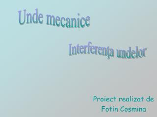 Proiect realizat de  Fotin Cosmina
