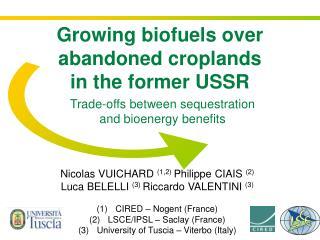 Trade-offs between sequestration and bioenergy benefits