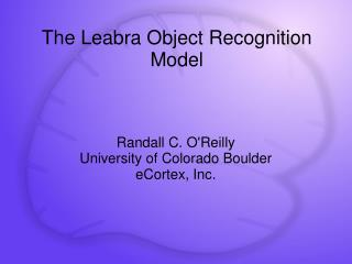The Leabra Object Recognition Model
