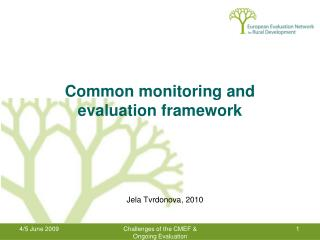 Common monitoring and evaluation framework