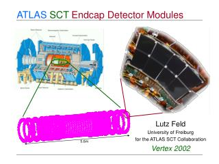 ATLAS SCT  Endcap Detector Modules