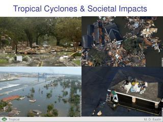 Tropical Cyclones & Societal Impacts