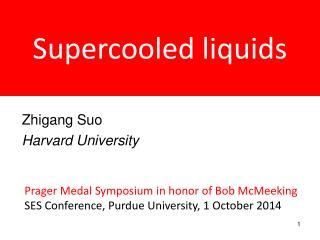 Supercooled liquids