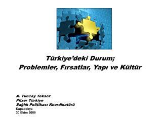 Türkiye'deki Durum; Problemler, Fırsatlar, Yapı ve Kültür
