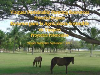 Vieques Sustainable Farming Resources Potential Projects Recursos para la Agricultura Sostenible