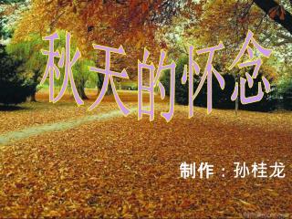秋天的怀念