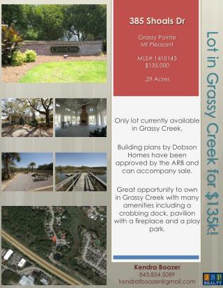 385 Shoals Dr Grassy Pointe Mt  Pleasant MLS#  1415143 $135,000 .29 Acres