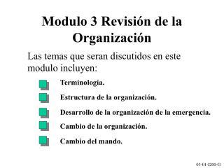 Modulo 3 Revisi�n de la Organizaci � n