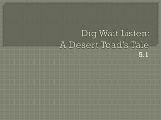 Dig Wait Listen:  A Desert Toad's Tale