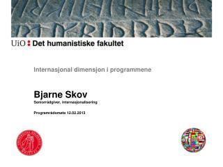 Internasjonal dimensjon i programmene