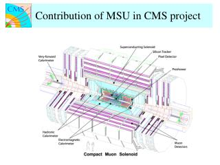 Preparations for CMS Heavy Ion Physics Program