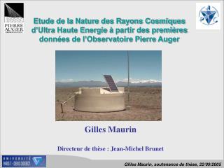 Gilles Maurin Directeur de thèse : Jean-Michel Brunet