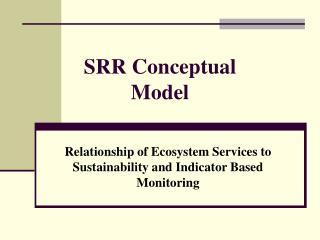 SRR Conceptual Model