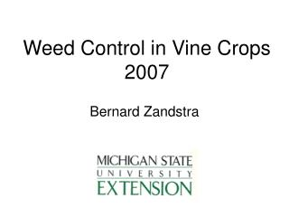 Weed Control in Vine Crops 2007
