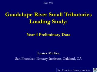 Guadalupe River Small Tributaries Loading Study:  Year 4 Preliminary Data
