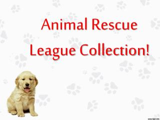 Animal Rescue League Collection!