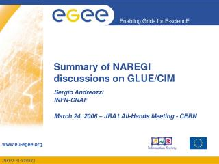 Summary of NAREGI discussions on GLUE/CIM