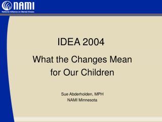 IDEA 2004