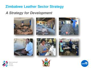 Zimbabwe  Leather Sector Strategy A  Strategy for Development