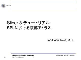 Slicer 3  チュートリアル SPL における腹部アトラス