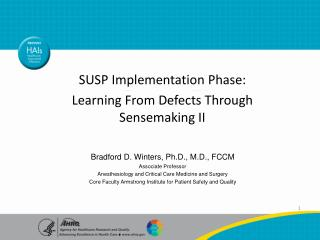 SUSP Implementation Phase: Learning From Defects Through Sensemaking II