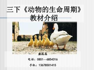 盛晶晶 电话:0851 — 6854316 手机:13678501415