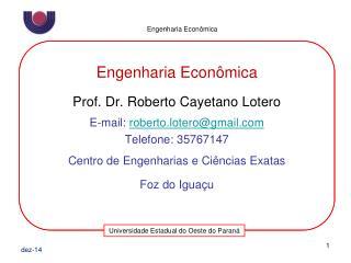 Engenharia Econ�mica Prof. Dr. Roberto Cayetano Lotero E-mail:  roberto.lotero@gmail