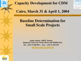 Capacity Development for CDM  Cairo, March 31  April 1, 2004  Baseline Determination for Small Scale Projects     Samir