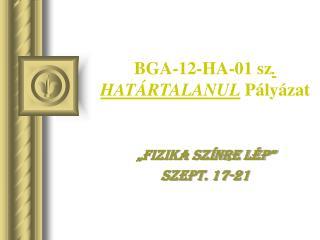 BGA-12-HA-01 sz . HATÁRTALANUL  Pályázat