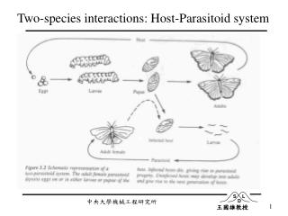 Two-species interactions: Host-Parasitoid system