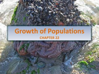 Growth of  Populations CHAPTER  22