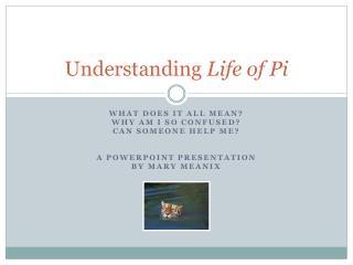 Understanding  Life of Pi