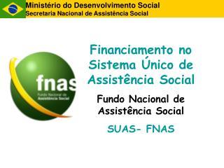 Minist�rio do Desenvolvimento Social Secretaria Nacional de Assist�ncia Social