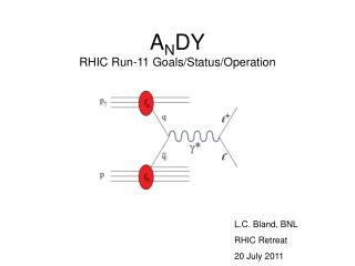 A N DY RHIC Run-11 Goals/Status/Operation