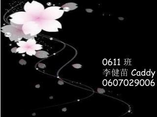 0611  班 李健苗  Caddy 0607029006