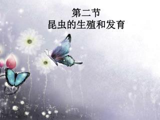 第二节 昆虫的生殖和发育