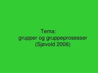 Tema: grupper og gruppeprosesser Sj vold 2006
