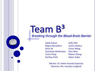 Team B³