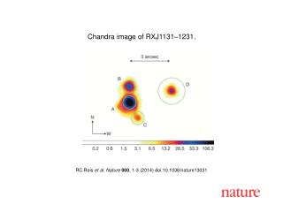 RC Reis  et al. Nature  000 , 1-3 (2014)  doi:10.1038/nature13031