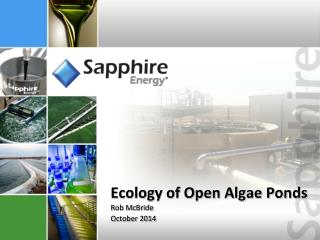 Ecology of Open Algae Ponds