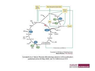 Campbell  et al. Nature Reviews Microbiology  advance online publication;