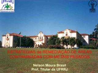 ESTRATÉGIAS de REMEDIAÇÃO DE ÁREAS CONTAMINADAS COM METAIS PESADOS Nelson Moura Brasil