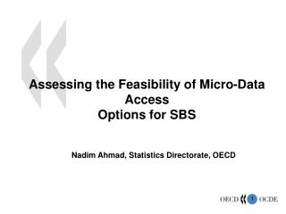 Assessing the Feasibility of Micro-Data Access Options for SBS